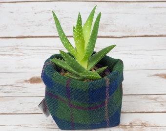 Small Fabric Pot in Navy, Green & Pink Harris Tweed
