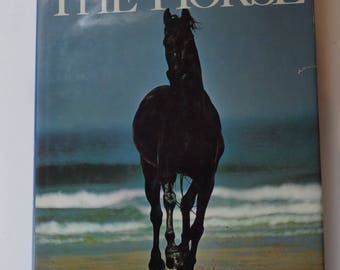 The Encyclopedia of the Horse-Alex Mackay-Smith-Chronicle of the Horse-1989