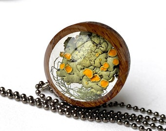 Colorado Orange Rock Lichen Terrarium Pendant: Nature Lover Jewelry with Real Lichen in Resin, Rocky Mountain Nature Necklace from Colorado
