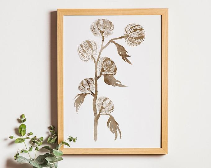 Cotton Flower Painting, Minimalist Art Print, Watercolor Plant, Floral Wall Art, Botanical Wall Décor, Living Room Décor Canvas Large Print