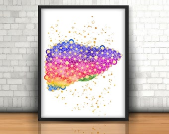 Liver Anatomy, Anatomy Art, Watercolor Anatomy Decor Medical Student Gift  Liver Art Medical Office Decor Hematologist Gifts Anatomy Poster