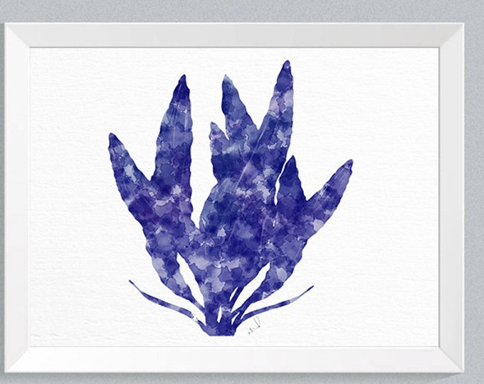 Seaweed Art Print, Blue And White, Coastal Decor,  Big Canvas Art, Nautical Decorating, Beach House Decor, Navy Blue Picture, Bathroom Art