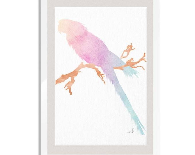 Parrot Poster, Bird Prints, Tropical Bird Art, Pastel Nursery Decor, Housewarming Gift, Parrot Lovers Gift, Canvas Art, Large Print, Parrots
