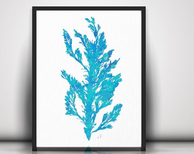 Aqua Coral Print, Nautical Decor, Beach Decor, Coastal Art, Sea Coral Prints, Coastal Decor, Print Coral, Prints Seaweed, Beach House Decor