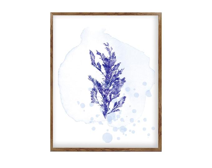 Coral Print, Wall Art, Watercolor Print, Beach Print, Beach Art, Fine Art Print, Bathroom Décor, Watercolor Print, Wall Art
