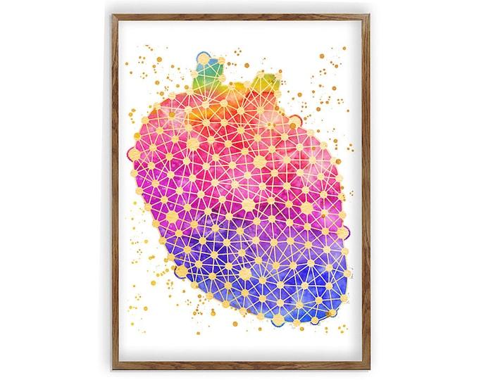 Anatomical Heart, Art Print, Watercolor Heart, Wall Art, Doctor Office Décor, Anatomy Heart Poster, Medical Print