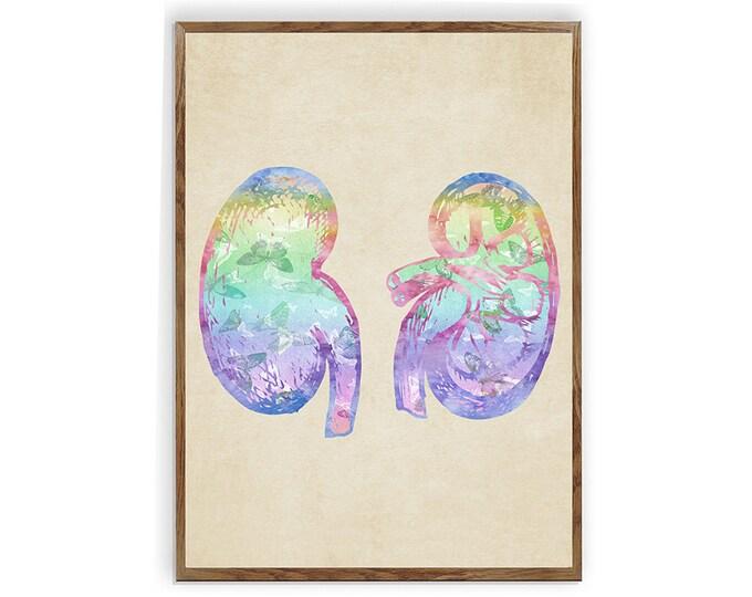 Kidney Anatomy, Anatomy Art, Anatomy, Med Student Gift, Kidney Art, Medical Office Décor, Hospital Décor