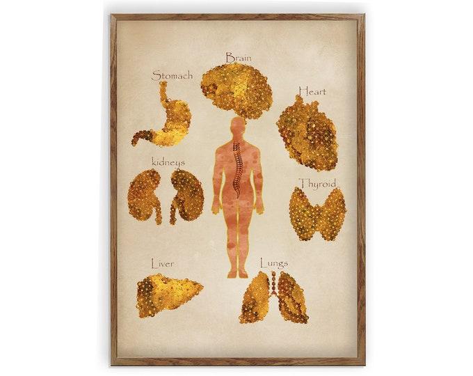 Anatomy Art, Human Organ, Human Body Print, General Practitioner, Classroom décor, Medical Art, Canvas Print, Biology Science