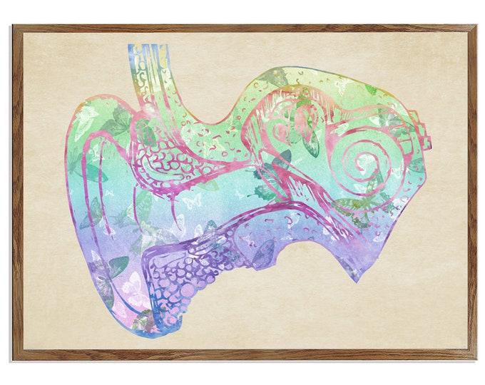 Human Ear Anatomy, Audiologist Office Décor, Audiology Poster, Human Ear Art, Anatomical Art Print, Gift for Doctor