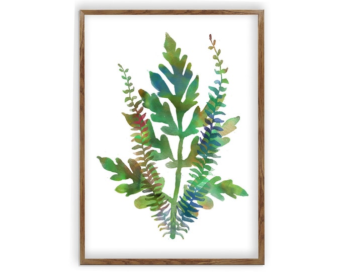 Watercolor Fern Print, Botanical Illustration, Greenery Collection, Plant Lover Gift, Kitchen, Bathroom, Wall Décor, Canvas Art, Ferns, Leaf