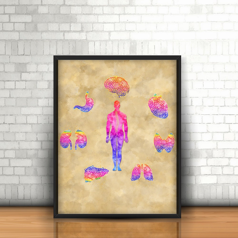 Medical Art, Doctor\'s Gift, Anatomy Art, Medical Graduation Gift ...