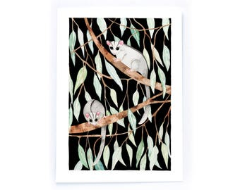 Possums at Night - archival art print