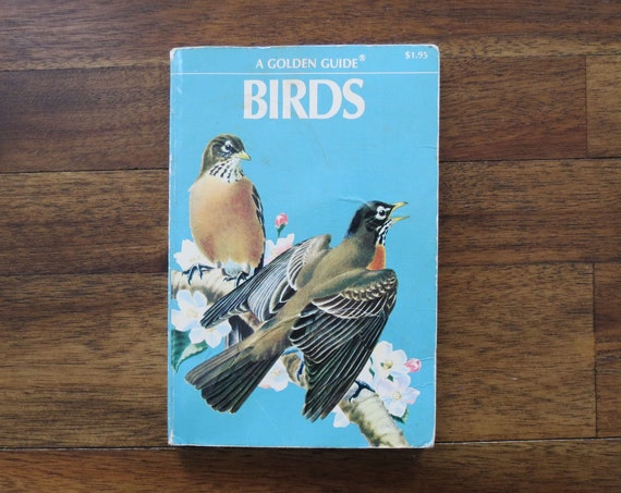 Birds Golden Guide / Golden Guide Bird Book / 1950's Paperback / Bird Field Guide / Ornithology Book / Owl Book / Nature Study Guide