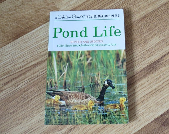 Pond Life Golden Guide / Nature Handbook / Classification Field Guide / Science Book / Plants Animals Lakes Streams Wetlands Shore