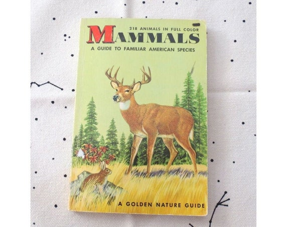 Mammals Golden Guide / Field Guide / Vintage Golden Guide / Nature Book / 50's Paperback / Animal Reference Guide / Science Book