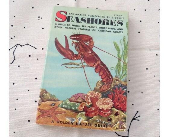 Ocean Book Vintage Seashores Golden Guide