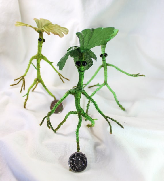 Bowtruckle Adoptions Etsy #professor kettleburn #newt scamander #care of magical creatures #bowtruckles #harry potter #hogwarts mystery. bowtruckle adoptions