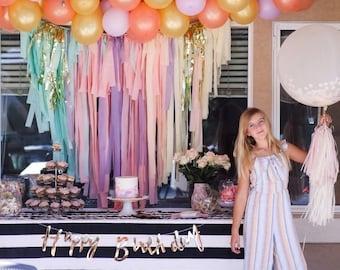 Tablecloth Fringe Backdrop, Flagtape Backdrop, Fringe Backdrop, Birthday, Party Theme, Customizable Pastel Unicorn