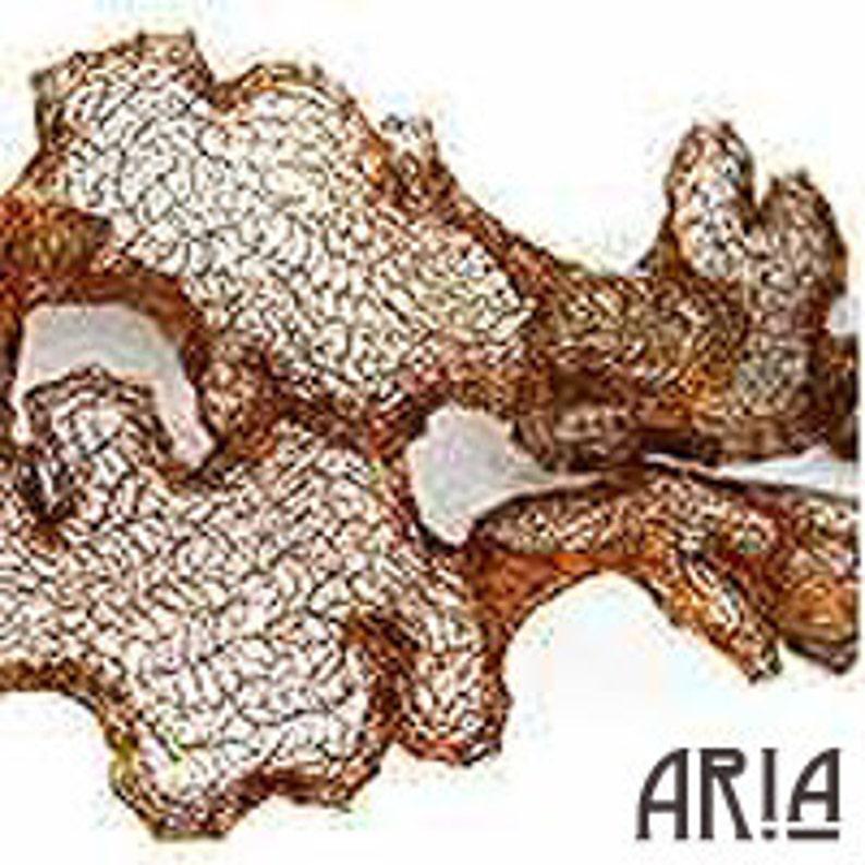 ITALIAN WIRE MESH: 6mm Antique Copper Italian Wire Mesh Ribbon image 0