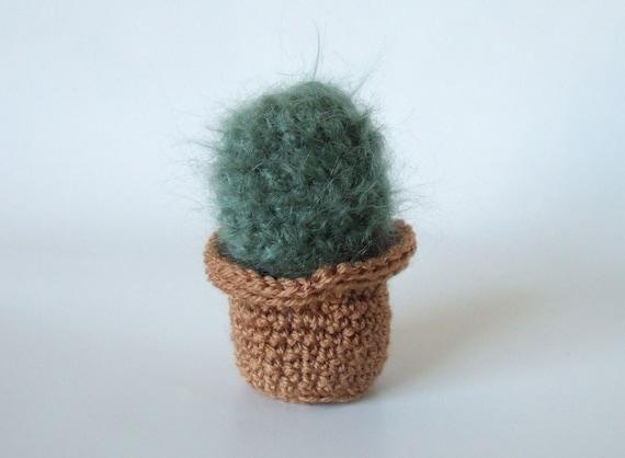 Cactus Pincushion Free Crochet Pattern | DailyCrochetIdeas | 418x570