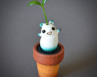 Potted Sprouting Magic Bean