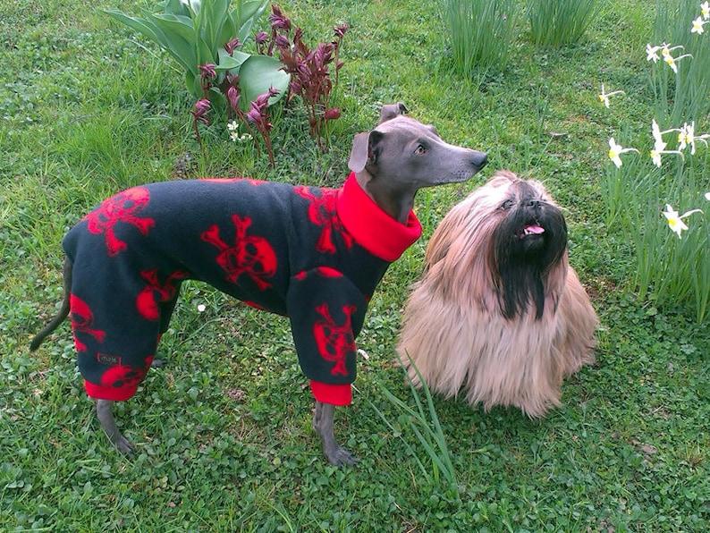 Italian Greyhound Pajamas / Italian Greyhound Sweater / Skull image 0