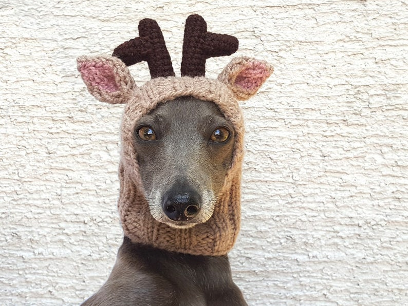 c3cbafd3063 Reindeer Dog Hat NEW DESIGN   Reindeer Dog Snood