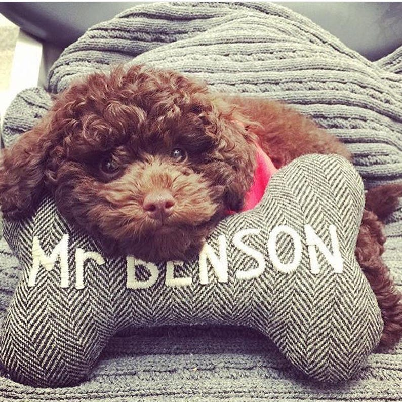 54be4318a9ab ... LARGE Custom Dog Toy Personalized with Embroidered Name image ...