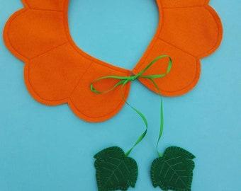 Pumpkin felt collar