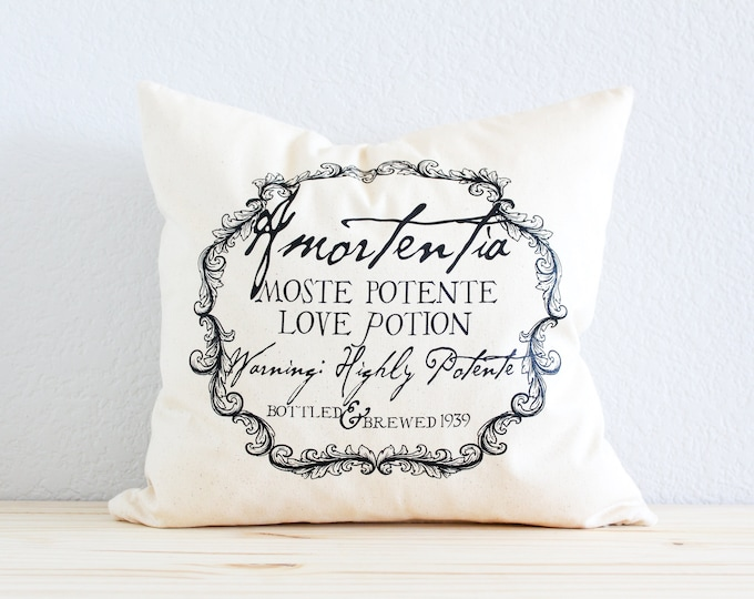 """Harry Potter JK Rowling Wizard Magical """"Amortentia"""" Love Potion Pillow"""