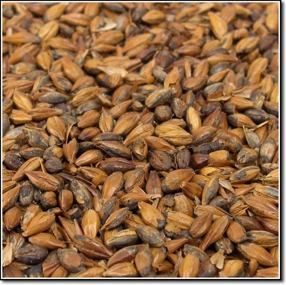 All Natural Raw Light Roasted Barley Brewers Malted Grain For Home Beer Brewing 1 Pound