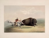 George Catlin 39 s North American Indian Portfolio quot Buffalo Chase quot (1844) - Giclee Fine Art Print