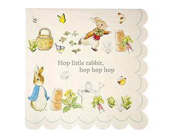 Peter Rabbit LARGE Paper Napkins (Set of 20) - 6.5  x 6.5   sc 1 st  Etsy & Peter Rabbit Small Paper Plates Set of 12 7x7 Meri