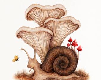 Forest Floor - Fine Art Illustration - Print