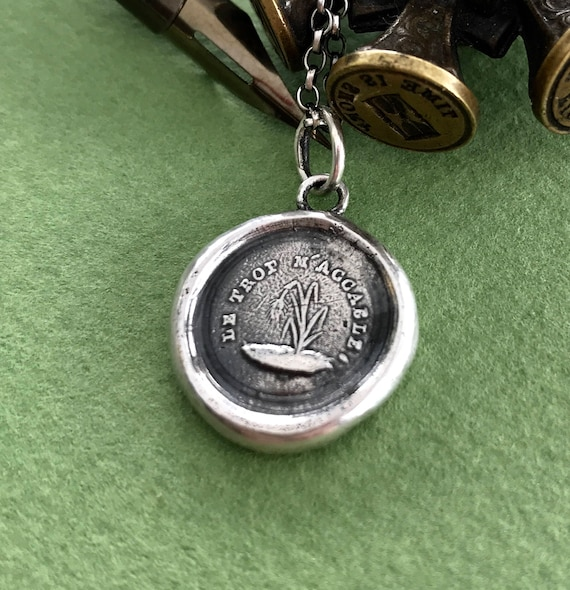 Too much overwhelms me, Le trop m'accable.  Wax seal jewellery, Broken, overwhelmed,  bowed, damaged, fragile. Sterling pendant. meaningful