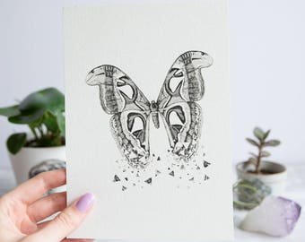 Atlas Moth | A5 Giclée Print