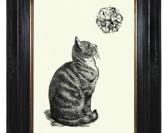 Cat Art Print Geometric Shape Form Polyhedron Victorian Steampunk Poster Pet Engraving Surrealism I