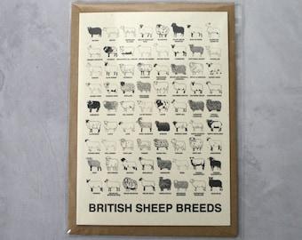 A6 British Sheep Breeds Card