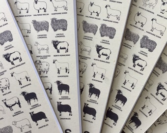 British sheep breeds notebook