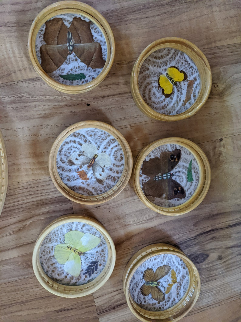 Interpur R.O.C Butterfly Serving Tray with Coasters