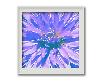 Purple Aster | Watercolor Print | INSTANT DOWNLOAD | Printable Art | 8x8