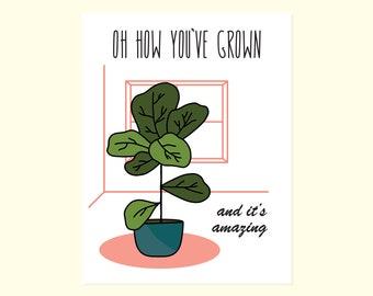 Sweet Card. Fiddle Fig. Congratulations Card. Encouragement Card. New Job. Inspirational Card. Cute Friendship Card. Plant Greeting Card.