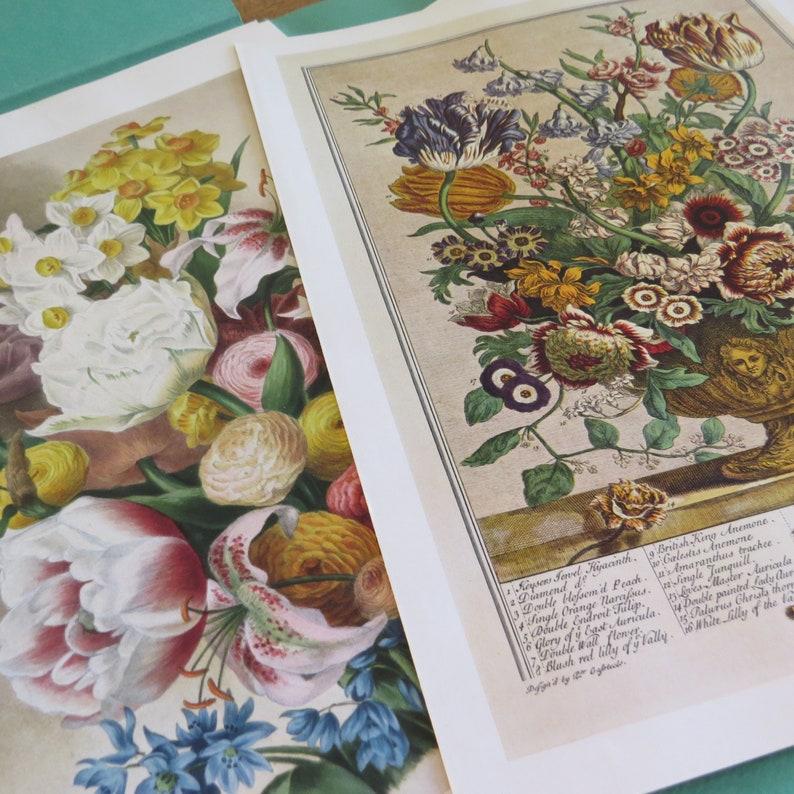 New York 1937 Victorian Designs House /& Garden/'s Portfolio of FLOWER PRINTS 25 Flower Prints and Their Makers Cond\u00e9 Nast Publications Inc