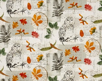 Michael Miller Owl Writing Collage Forest Leaf Leaves Autumn CX7273-FORE-D Fabric BTY