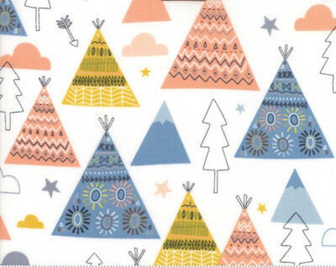Moda Fabric Wild Free Abi Hall 35312-12 Quilt quilting Fabric  BTY