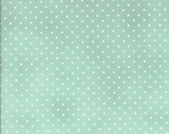 Robyn Pandolph Home Essential Polka Dots Aqua Mint Green with White 0016-037 Fabric BTY