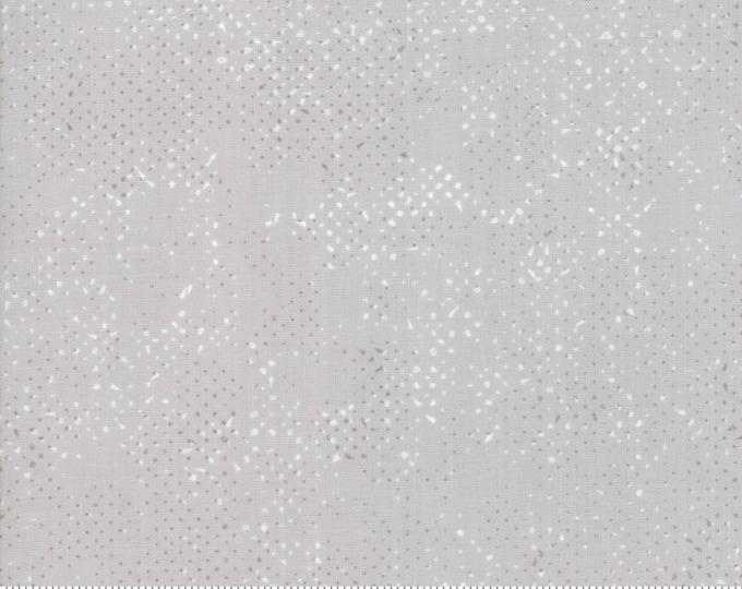 Moda Zen Chic Spotted 2019 Zen Grey Gray Steel Blender Background Fabric 1660-87 BTY