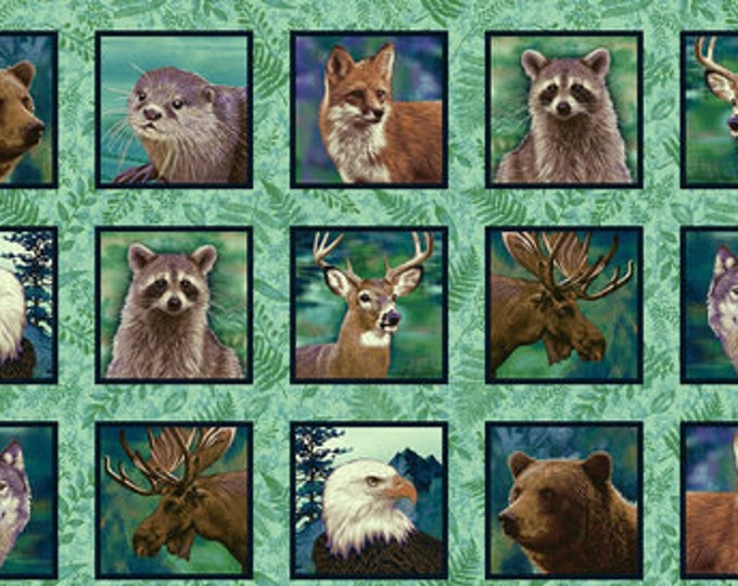 Studio E Fabrics Woodland Wonders Animal Bear Deer Raccoon Fox Eagle Moose Wolf Panel Fabric 4867-76 BTP 24 x 42