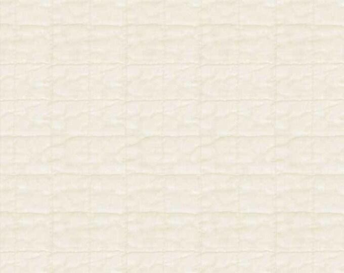 "p&B Textiles/Washington Street Studio 108"" Wide Back Historical Quilt Backs Quilt Beige HIQB 4055 E Cotton Fabric BTY"
