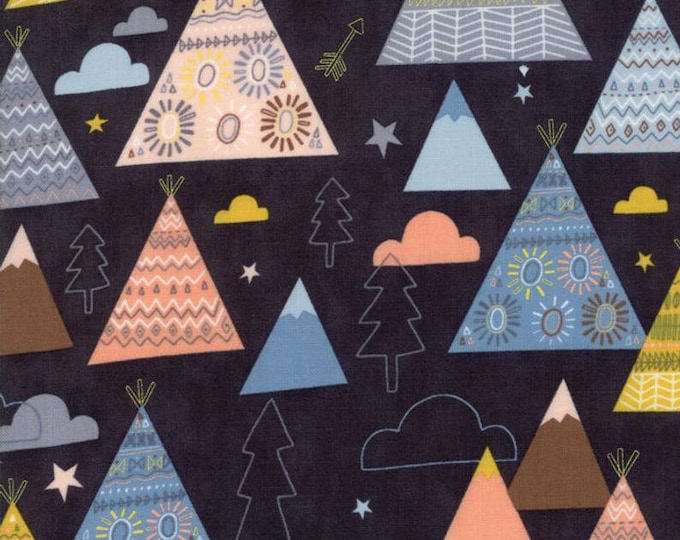 Moda Fabric Wild Free Abi Hall 35312-12 Quilt quilting Fabric  BTY